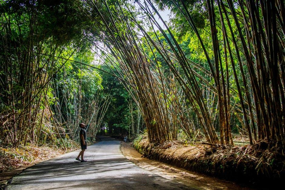 Paket Tur Desa Tradisional Penglipuran Bali | Balitripin.com