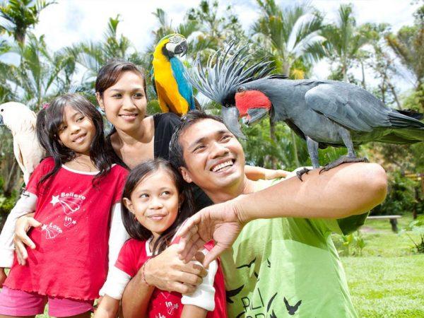 Promo Tiket Bali Bird Park Untuk Domestik