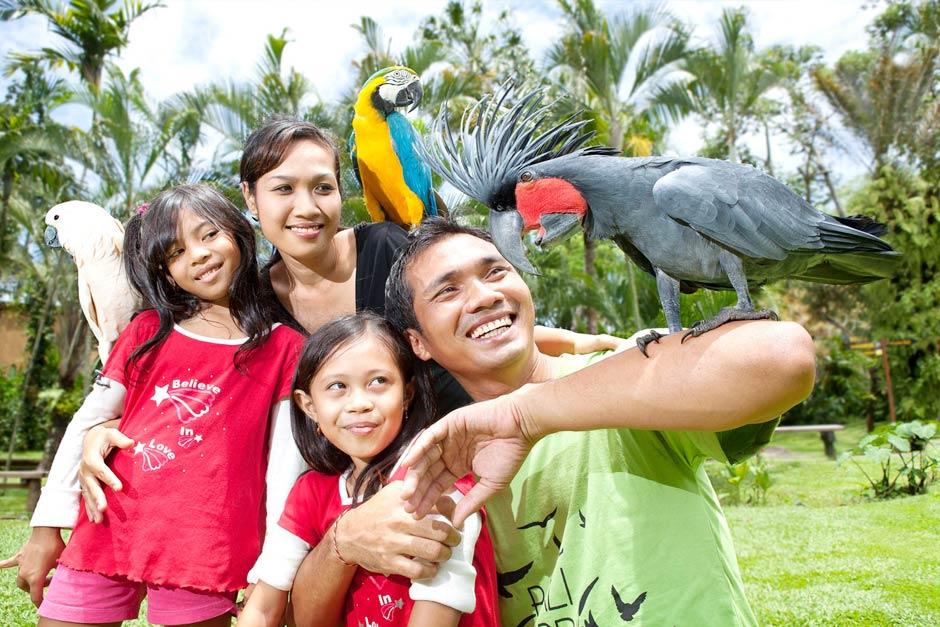 Promo Tiket Bali Bird Park Untuk Domestik Akhir Tahun 2020 | Balitripin.com